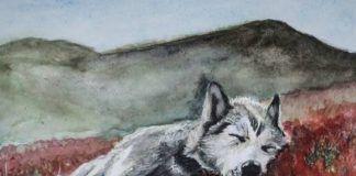 """Promocija knjige """"Poslednji urlik vukova"""": Monotonija, bes i nemoć sopstvene generacije"""