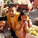 Kineska kinematografija: Najbolji filmovi o tradiciji i životu