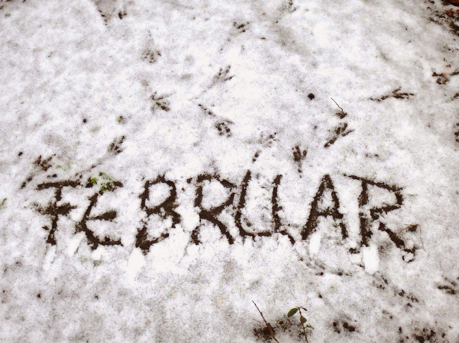 Kratak kao februar